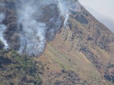 Forest fire, peru